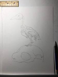 raven and skull before watercolor